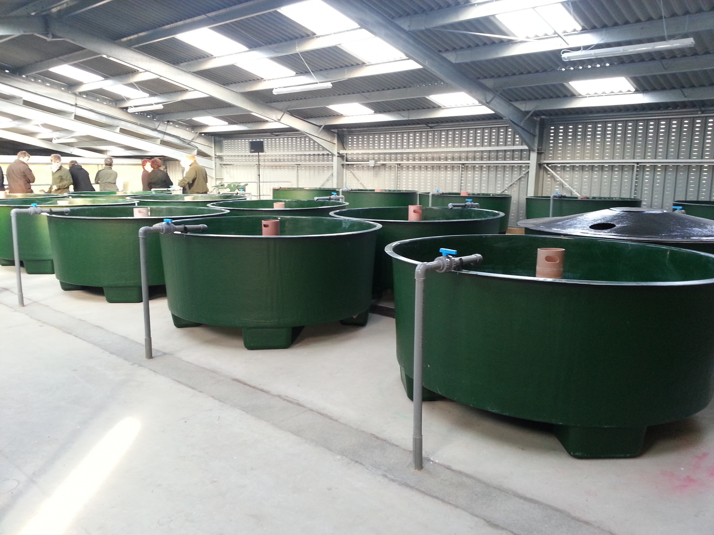 Circular tanks purewell fish farming equipment ltd for Fish farm tanks