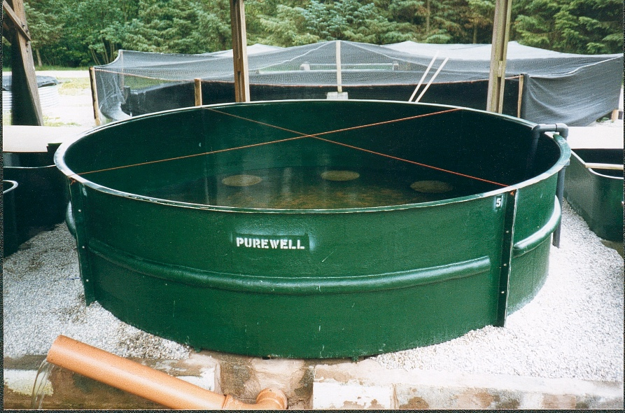 circular tanks purewell fish farming equipment ltd